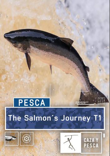 el viaje del salmon
